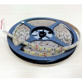 15W/M Brightest Pure White SMD 5050 LED Strip 5M 300LED Flex Light